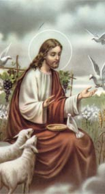 Jesus and the Birds
